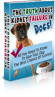 kidney failure in dogs graphic